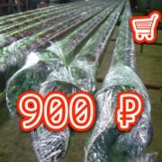 SP11 180x180 - Сваи для забора SP 76, 2 метра - 900 ₽ -