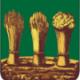 Винтовые сваи в Пензе, винтовой фундамент в Пензе